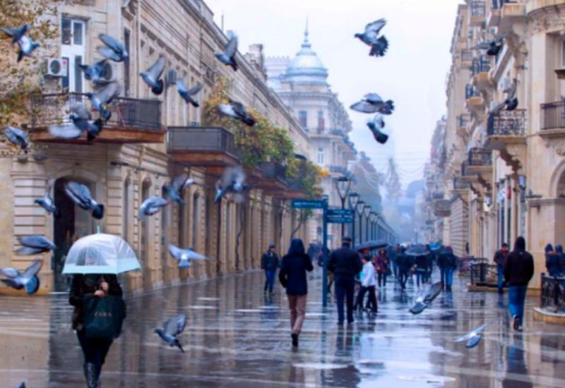 В Баку снова будет дождливо