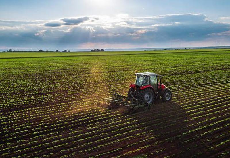Азербайджан внедряет инновации для развития аграрного туризма