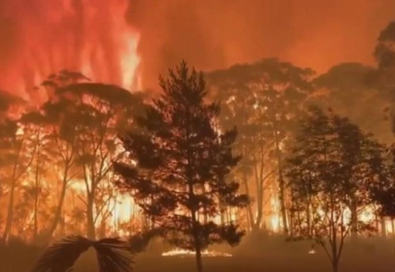 Природные пожары в Австралии: огнем охвачено почти 400 тысяч гектаров леса