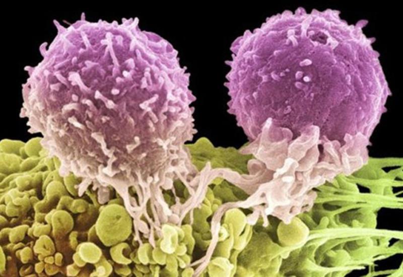 Названы способные вызвать рак вирусы