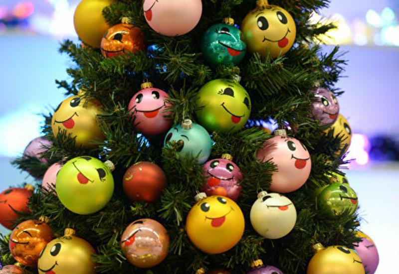 Аллергологи дали советы по установке новогодней елки