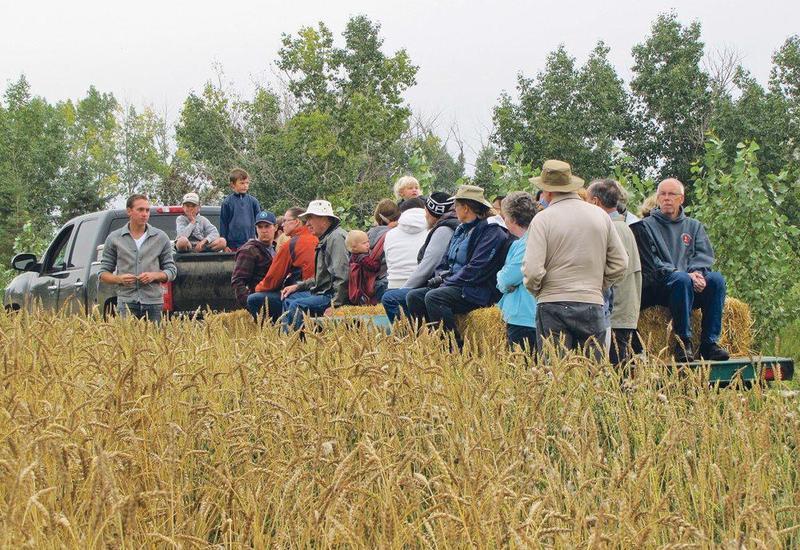 К развитию агротуризма в Азербайджане будут привлечены сотни фермеров