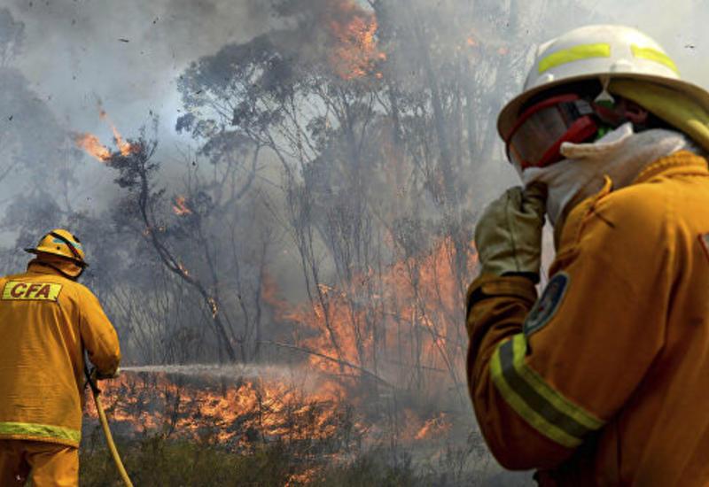 В Грузии бушуют лесные пожары