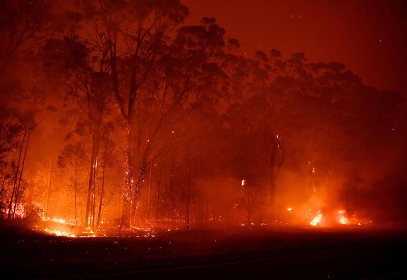 Как выглядит сегодня Австралия, охваченная лесными пожарами