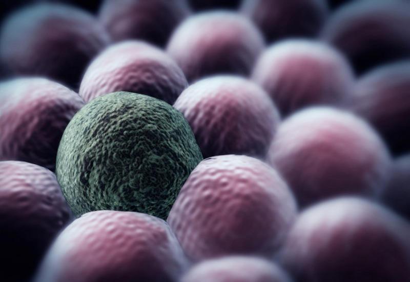 Ученые нашли способ убить ракзасекунду