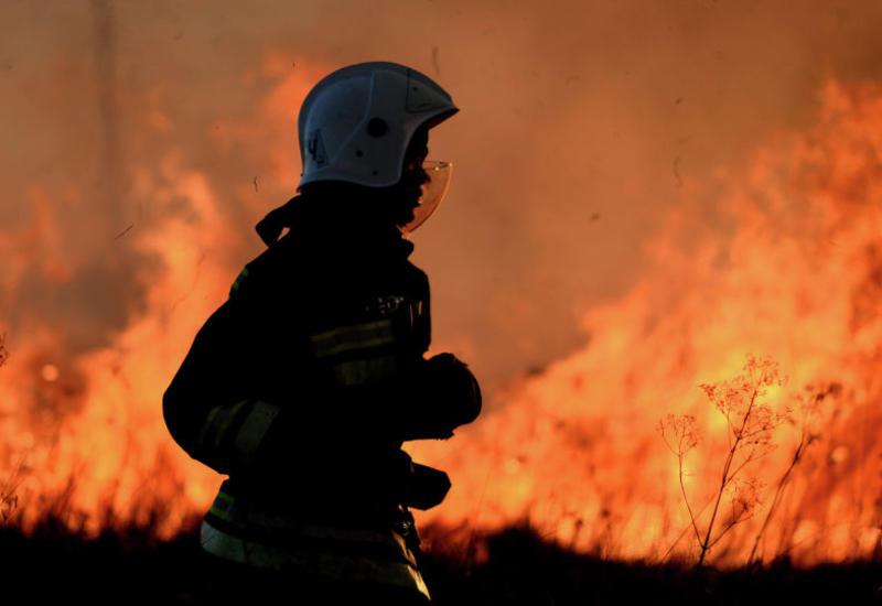 В Австралии массивный лесной пожар охватил площадь более 500 тыс. га