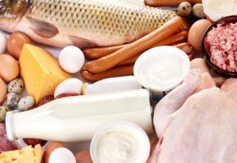 Ученые выяснили, кому полезна высокобелковая диета