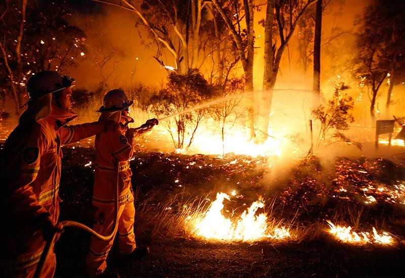 Westpac оценил убытки Австралии от лесных пожаров в $3,5 млрд