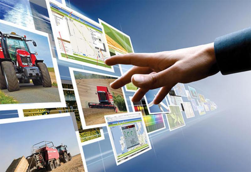Инновации обусловили устойчивый рост в аграрном секторе Азербайджана