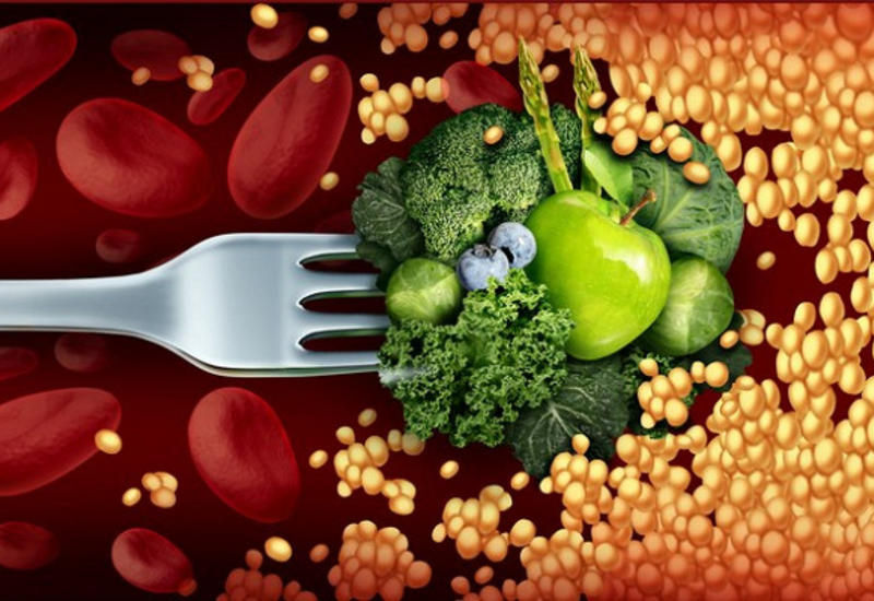 Какпитаться, чтобы растворить холестериновые бляшки итромбы