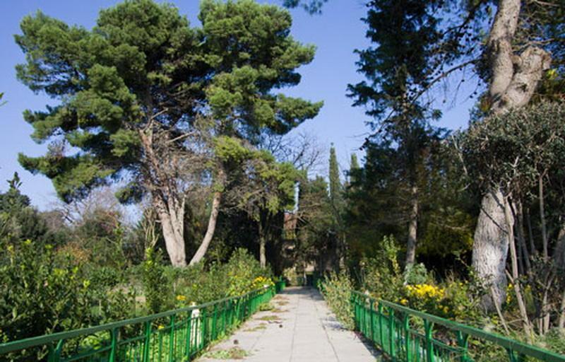 Необычные факты об удивительном поселке Мардакян
