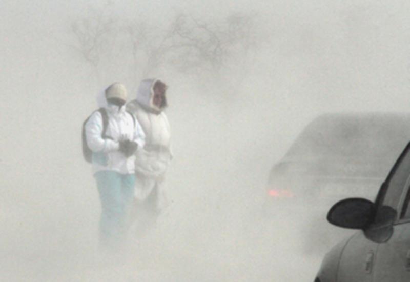 В Канаде более тысячи домов остались без света из-за снегопада