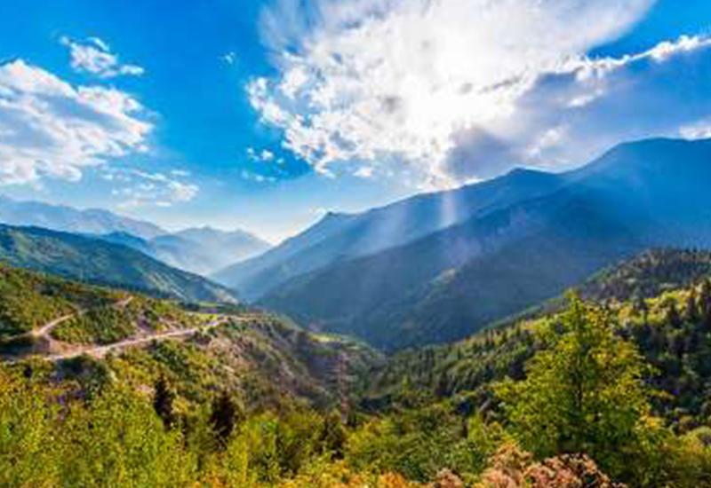 В Давосе высоко оценят вклад Азербайджана в борьбу за экологию планеты