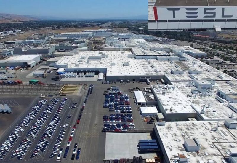 На территории будущего завода Tesla нашли семь бомб времен войны