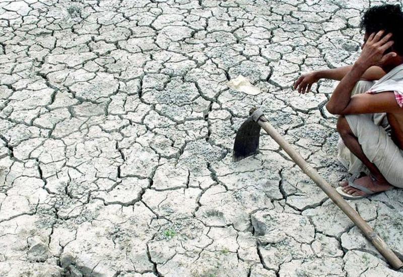 Названо новое последствие климатической катастрофы