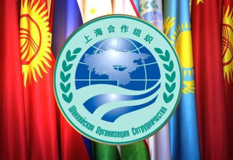 Саммит ШОС пройдет в формате видеоконференции
