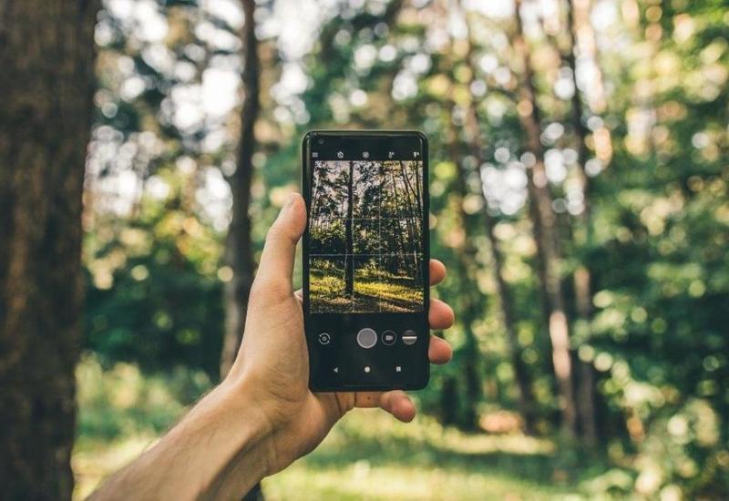 В Азербайджане можно будет наблюдать за дикой природой с помощью смартфонов