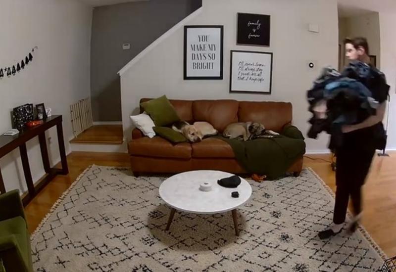 Видео с собакой, которая помогла хозяину со стиркой, набрало больше 8 млн просмотров