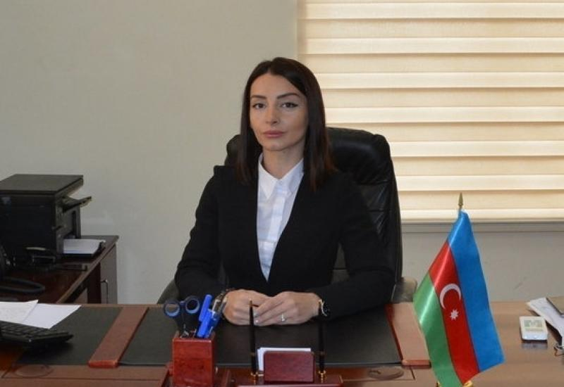 Вся ответственность за кровавую провокацию, способствующую эскалации напряженности, ложится на Армению