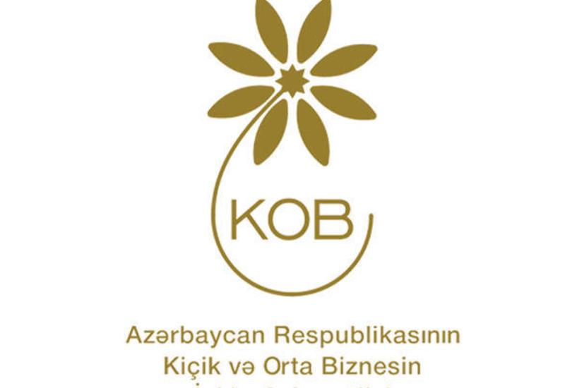 Подготовлено презентационное видео о деятельности Агентства по развитию МСБ Азербайджана