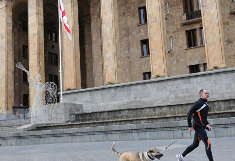 В Грузии оппозиционеры проводят митинг около парламента