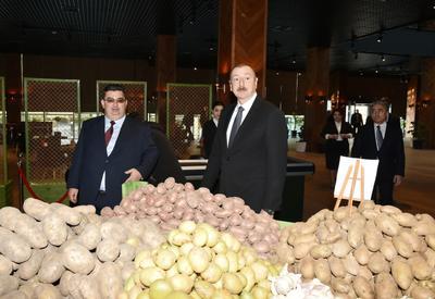 Агропромышленные комплексы станут драйвером роста ненефтяного сектора в Азербайджане