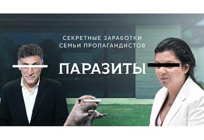 В России раскрыли секретные схемы Симоньян и Кеосаяна, на которых они заработали миллионы - расследование - ФОТО - ВИДЕО