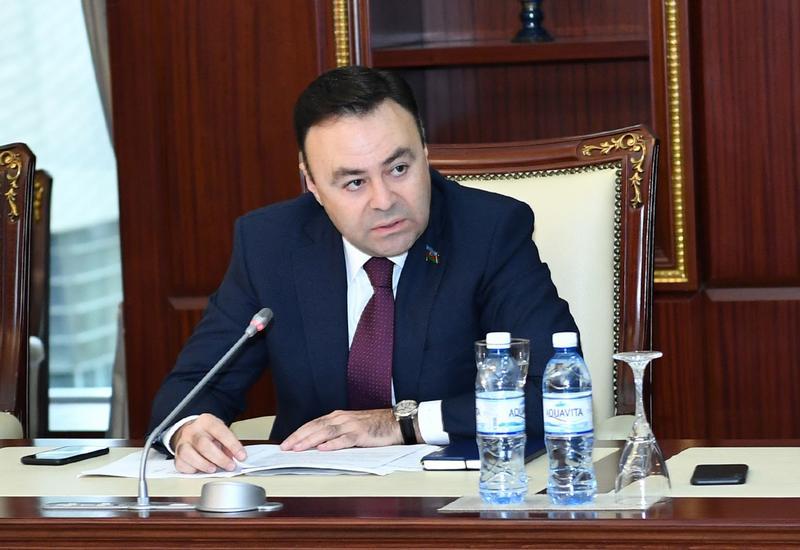 Elnur Allahverdiyev: Azərbaycan pandemiya nəticəsində yaranmış iqtisadi xarakterli əngəllərin minimallaşdırılması istiqamətində addımlar atır