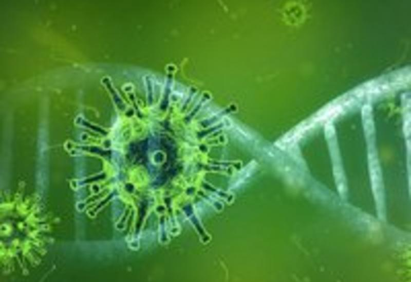 В Украине число зараженных коронавирусом достигло 113 человек