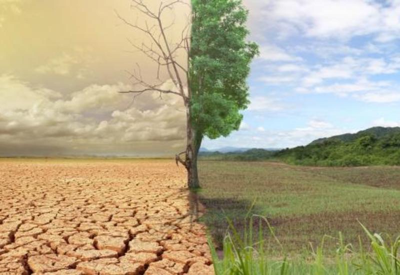 Конференцию ООН по климату в Глазго отложили из-за коронавируса