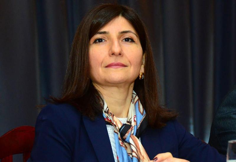 Севиль Микаилова: Армения, как страна-агрессор, никогда не получала и не получит поддержки