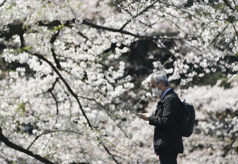 В Японии вводится локальный режим чрезвычайной ситуации в связи с коронавирусом