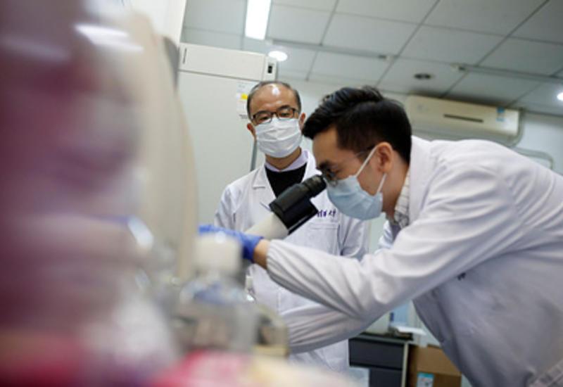 В Китае нашли два новых вида птичьего гриппа
