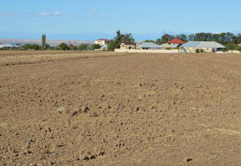 В Азербайджане возникла угроза засоления территорий площадью до 500 тысяч гектаров