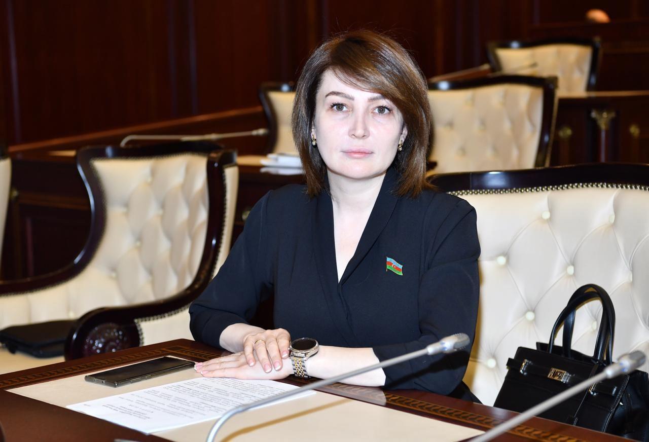 Армения на протяжении истории осуществила серию этнических чисток против азербайджанского населения