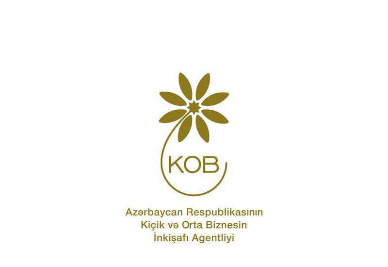 В Агентство по развитию МСБ Азербайджана поступило свыше 1 700 обращений