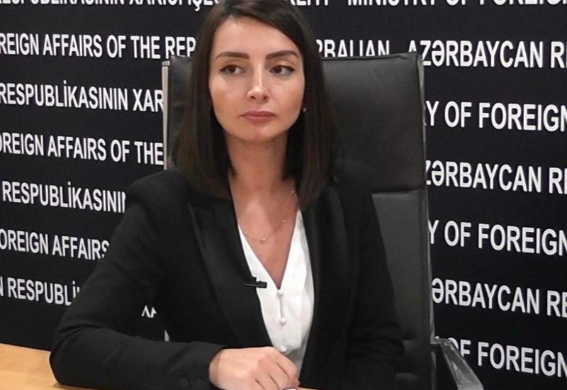 Leyla Abdullayeva: Nikol Paşinyanın məsuliyyətsiz davranışı münaqişənin sülh yolu ilə həlli imkanlarını heçə endirir
