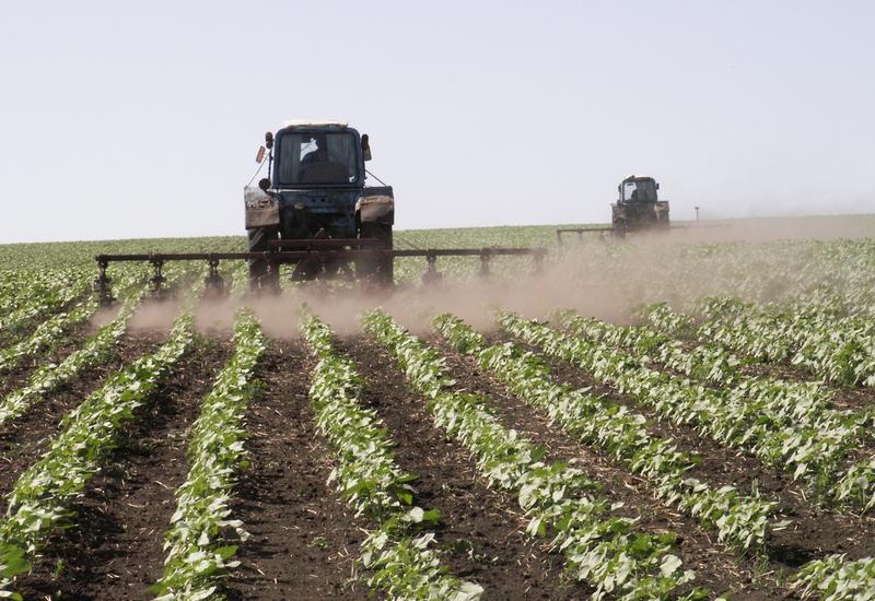 В Азербайджане проводится мониторинг заявлений фермеров на получение субсидий для весенних посевов
