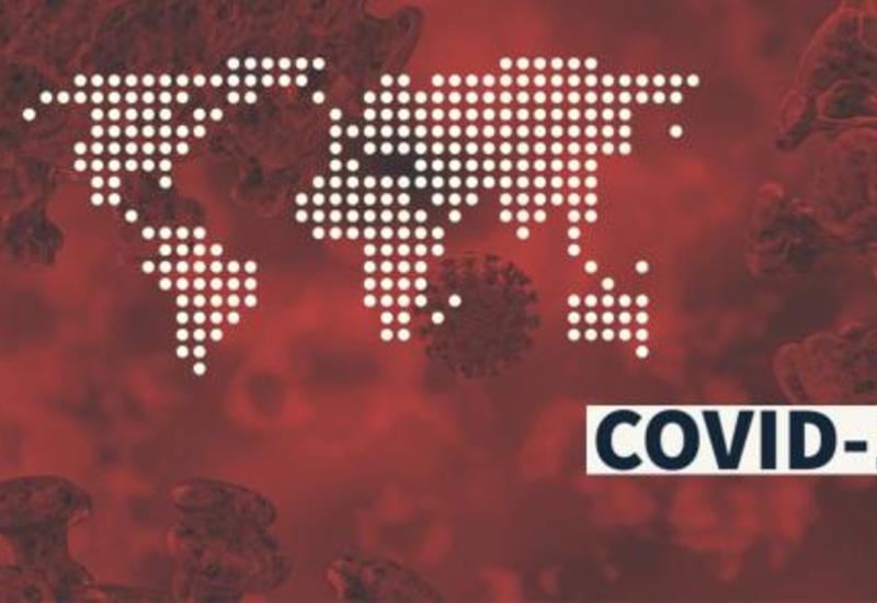 Ученые назвали число выявленных в России штаммов коронавируса