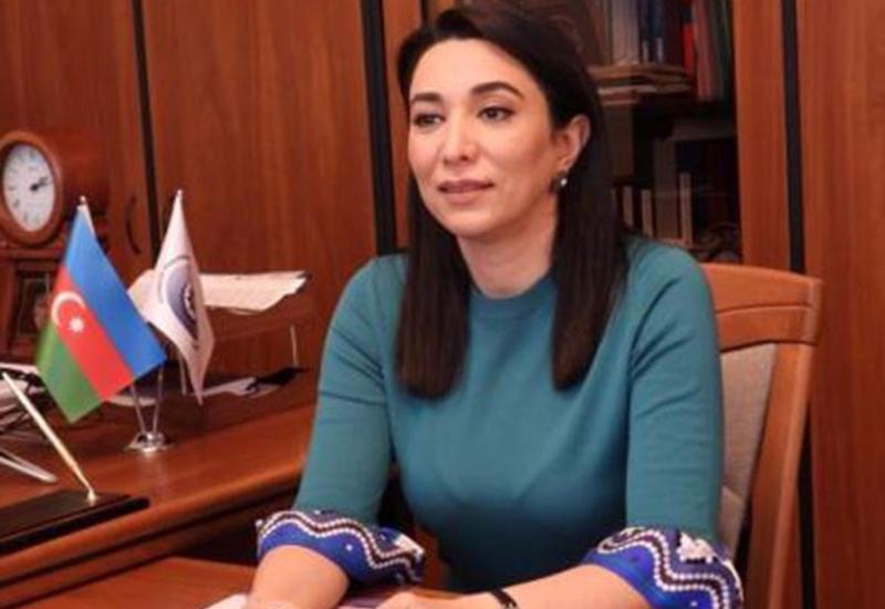 Омбудсмен Азербайджана распространила обращение в связи с незаконными «выборами» в оккупированном Нагорном Карабахе