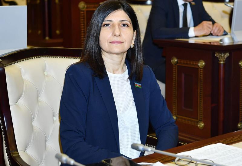 Севиль Микаилова: Выдвинутые Президентом Ильхамом Алиевым инициативы по внедрению интеллектуальных систем станут качественно новым этапом в развитии страны