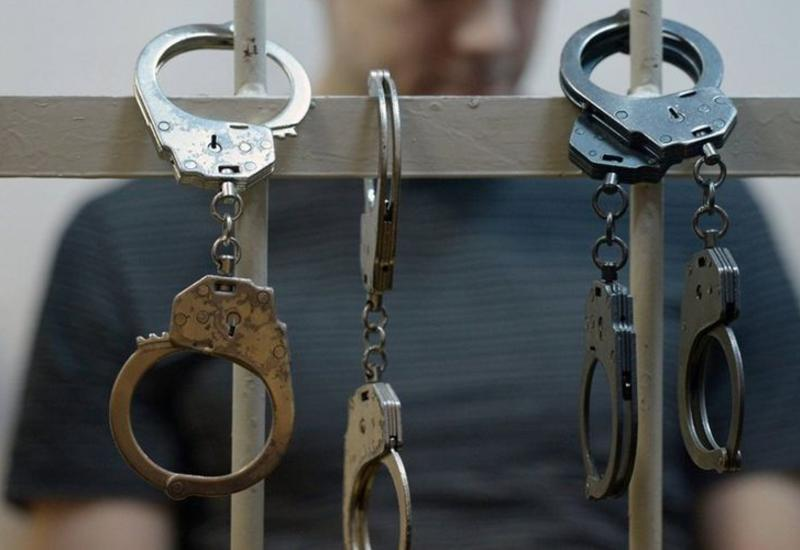 Задержаны организаторы собачьих боев в Азербайджане