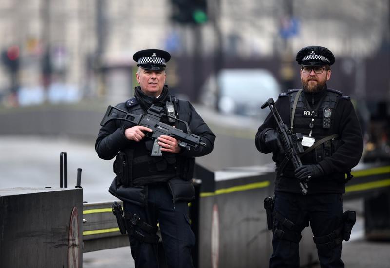 В Лондоне задержано 23 человека на акции протеста в связи с гибелью афроамериканца в США