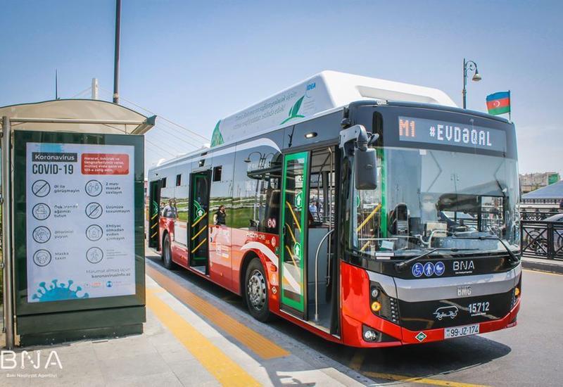 В Баку увеличили количество действующих автобусов