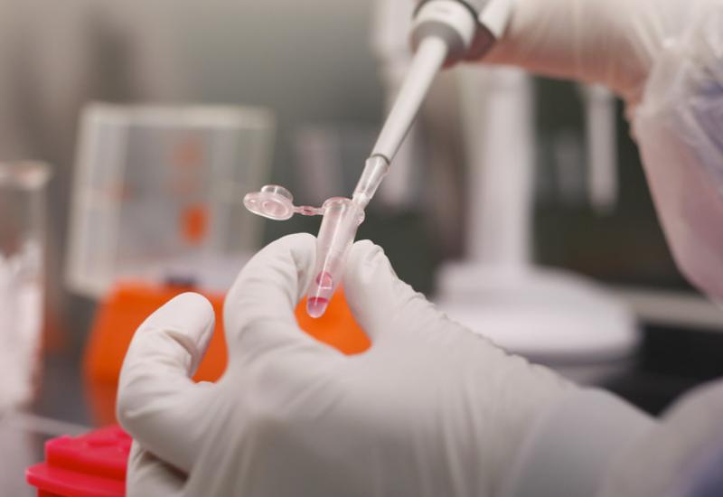 В Грузии 893 инфицированных коронавирусом