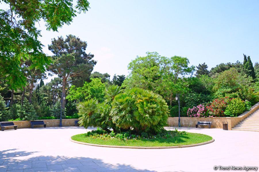 Нагорный парк Баку в дни пандемии