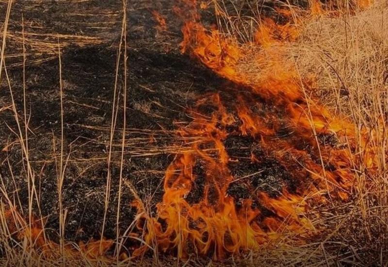 Возбуждено уголовное дело в связи с пожарами, совершенными армянами из белых фосфорных снарядов
