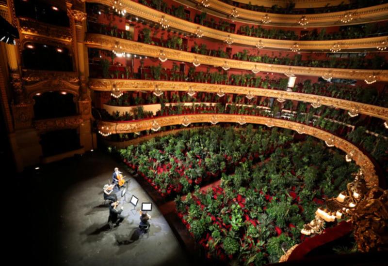 В Испании опера дала концерт для тысяч растений