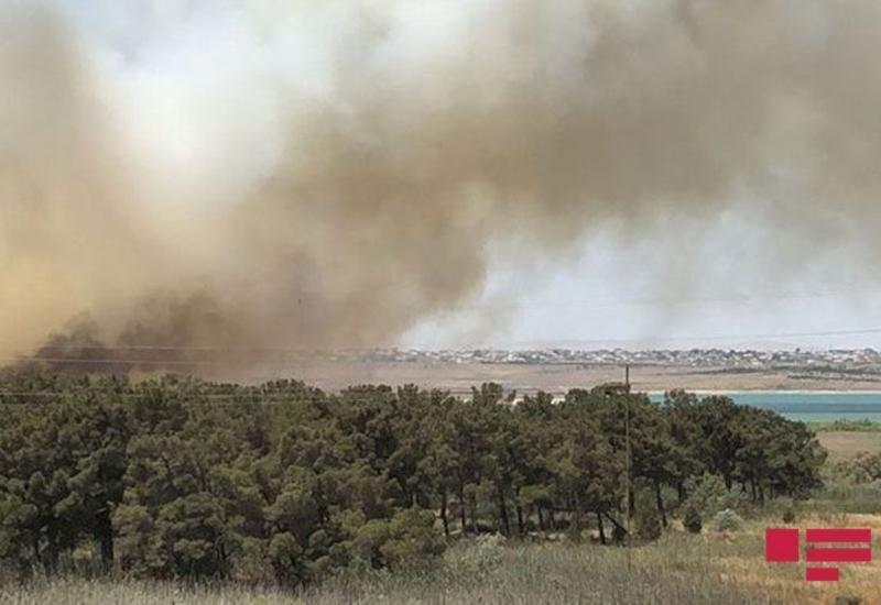 Возле Джейранбатанского водохранилища начался пожар