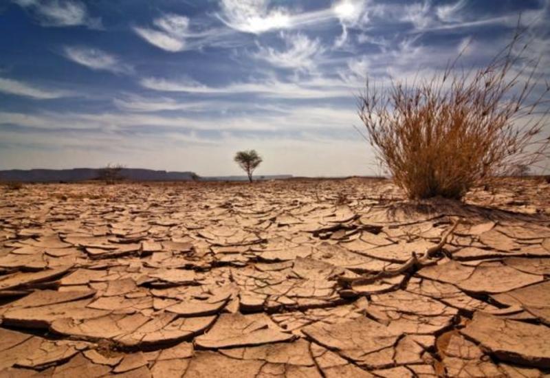 Эпидемия не смогла помочь со спасением планеты
